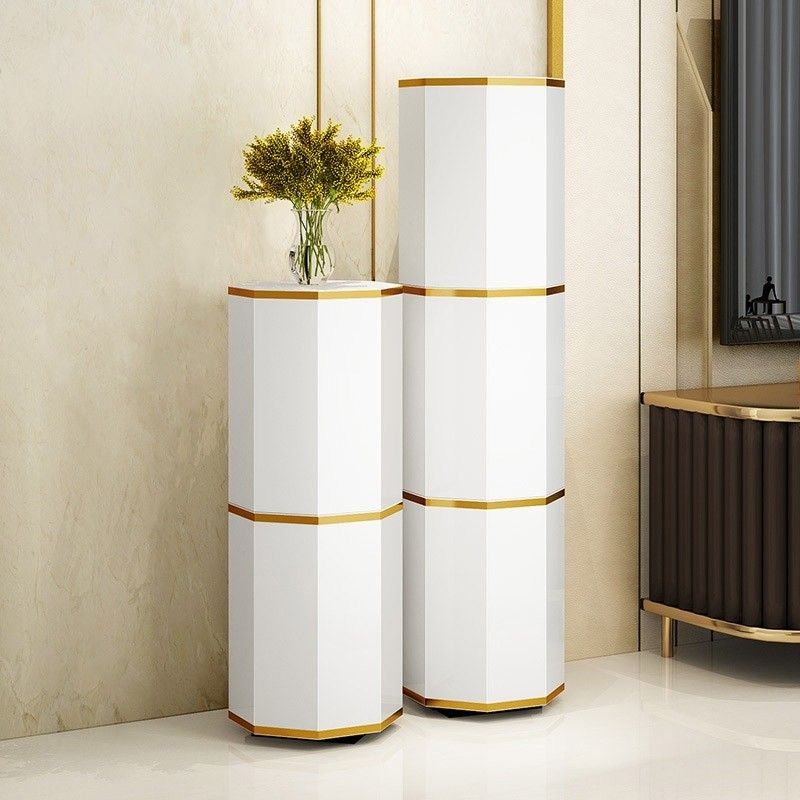Modern Round Swivel Shoes Storage Cabinet Tall And Narrow Shoe Cabinet White Gold Shoe Storage 3 Pairs 6 Pairs 9 Pairs In 2020 Shoe Storage Cabinet Shoe Storage Shoe Cabinet