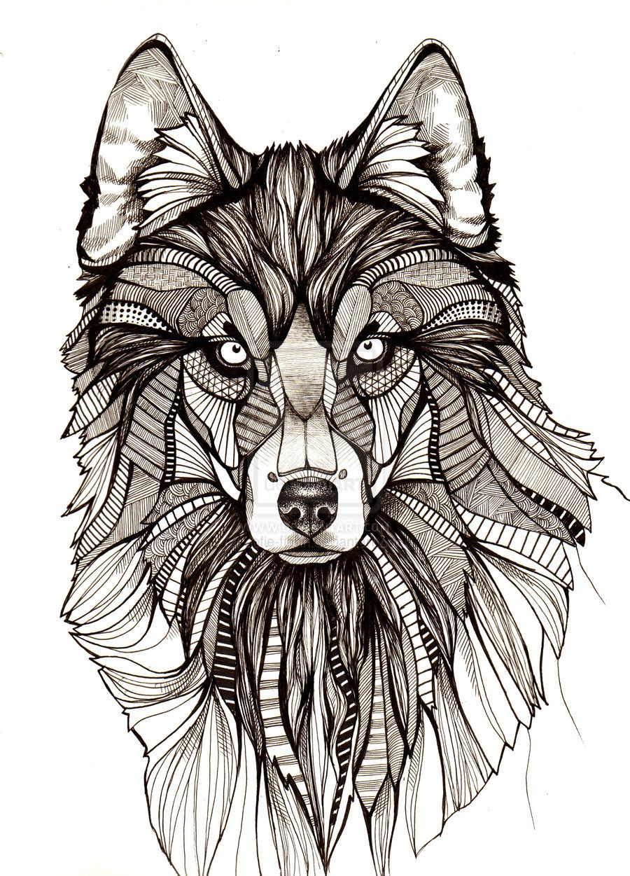 Wolf By Aofie Fionn Deviantart Com On Deviantart Deviantart Drawings Wolf Illustration Animal Coloring Pages