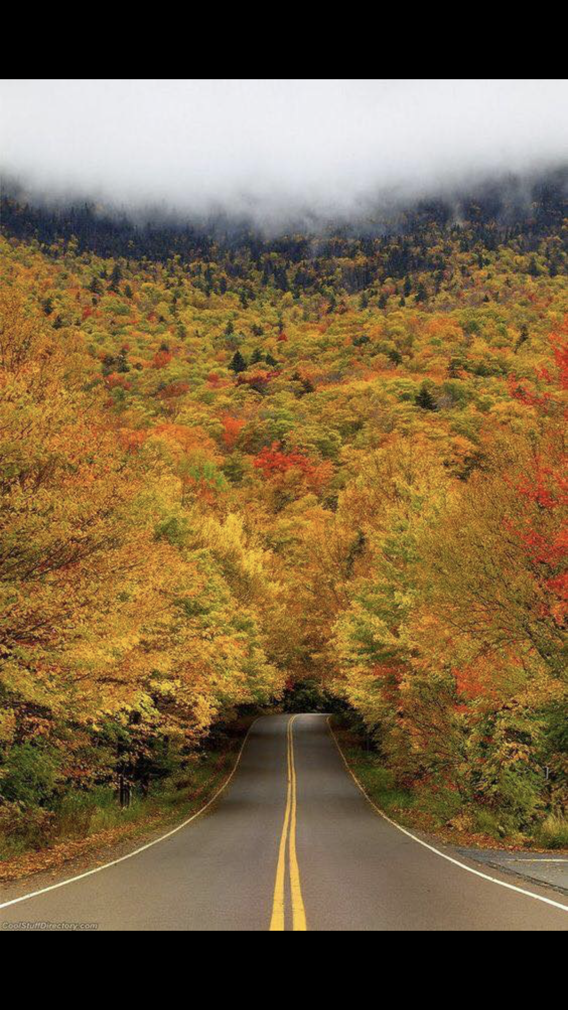 Pin by Deb Woller on Fall (With images) Road trip usa