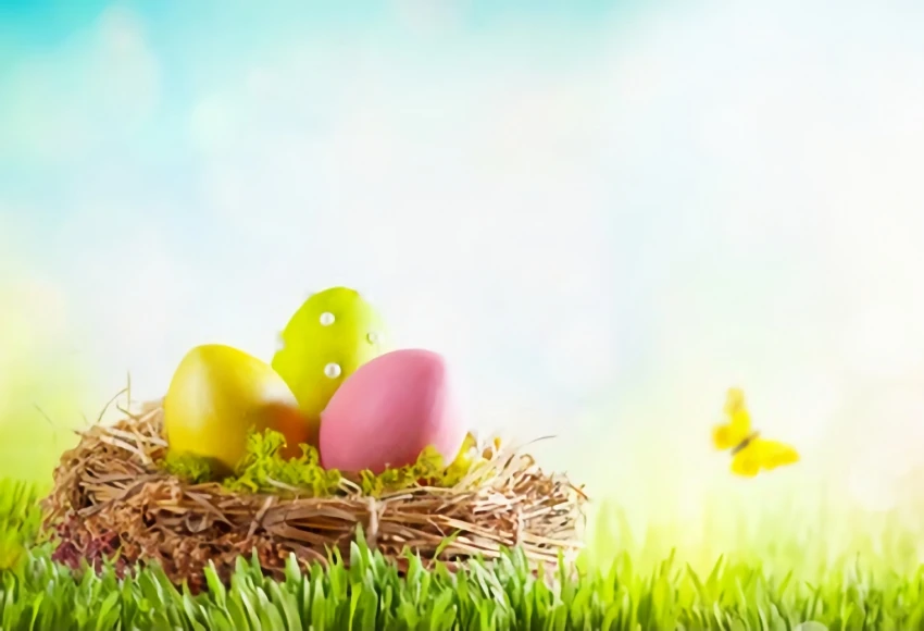 Easter Eggs Green Grass Background Backdrop For Photography Sh150 Easter Backdrops Green Grass Background Grass Background