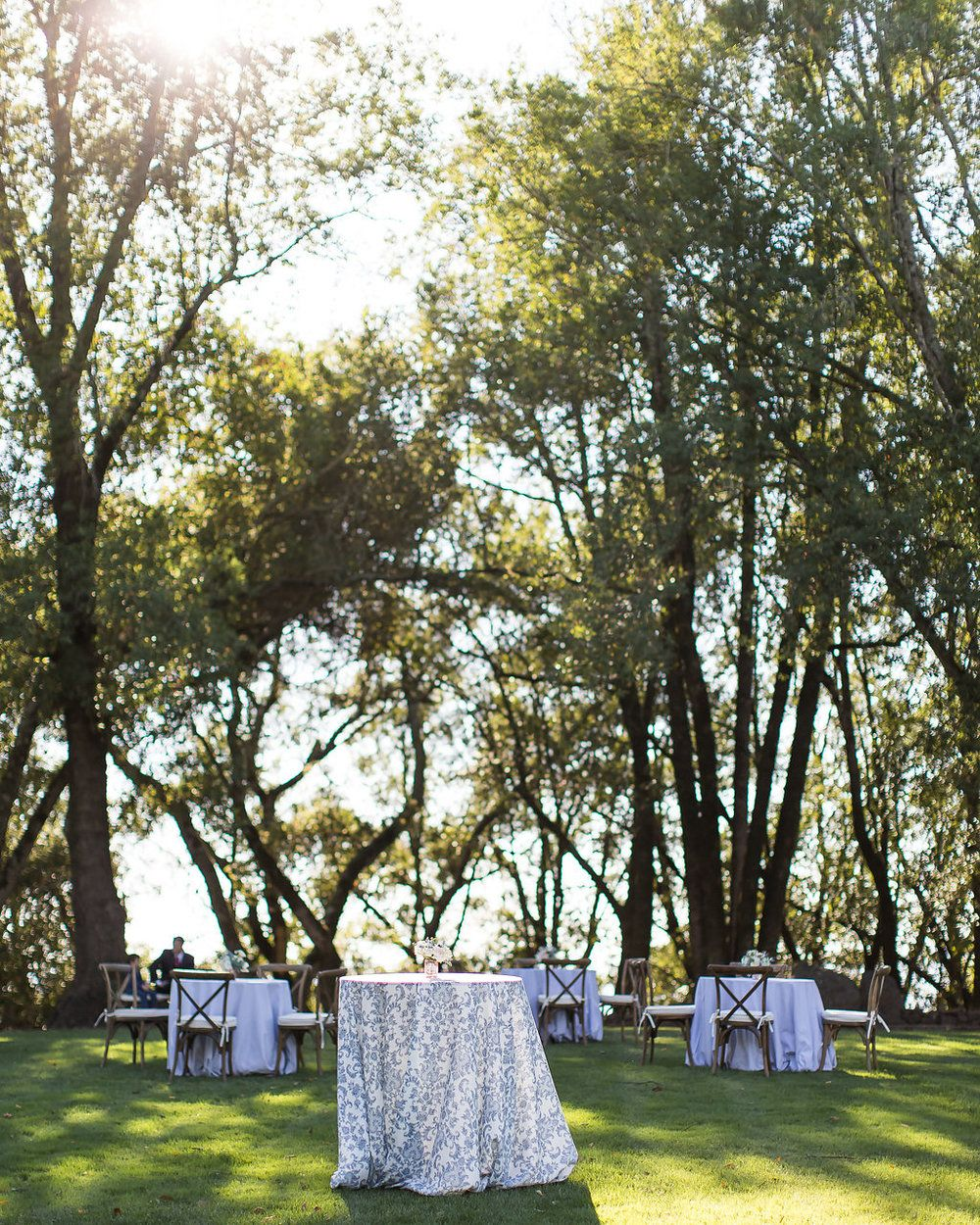 Ashley Mauriston Events Whimsical Winery Wedding At Chalk Hill Chalk Hill Swimming Pond Winery Weddings