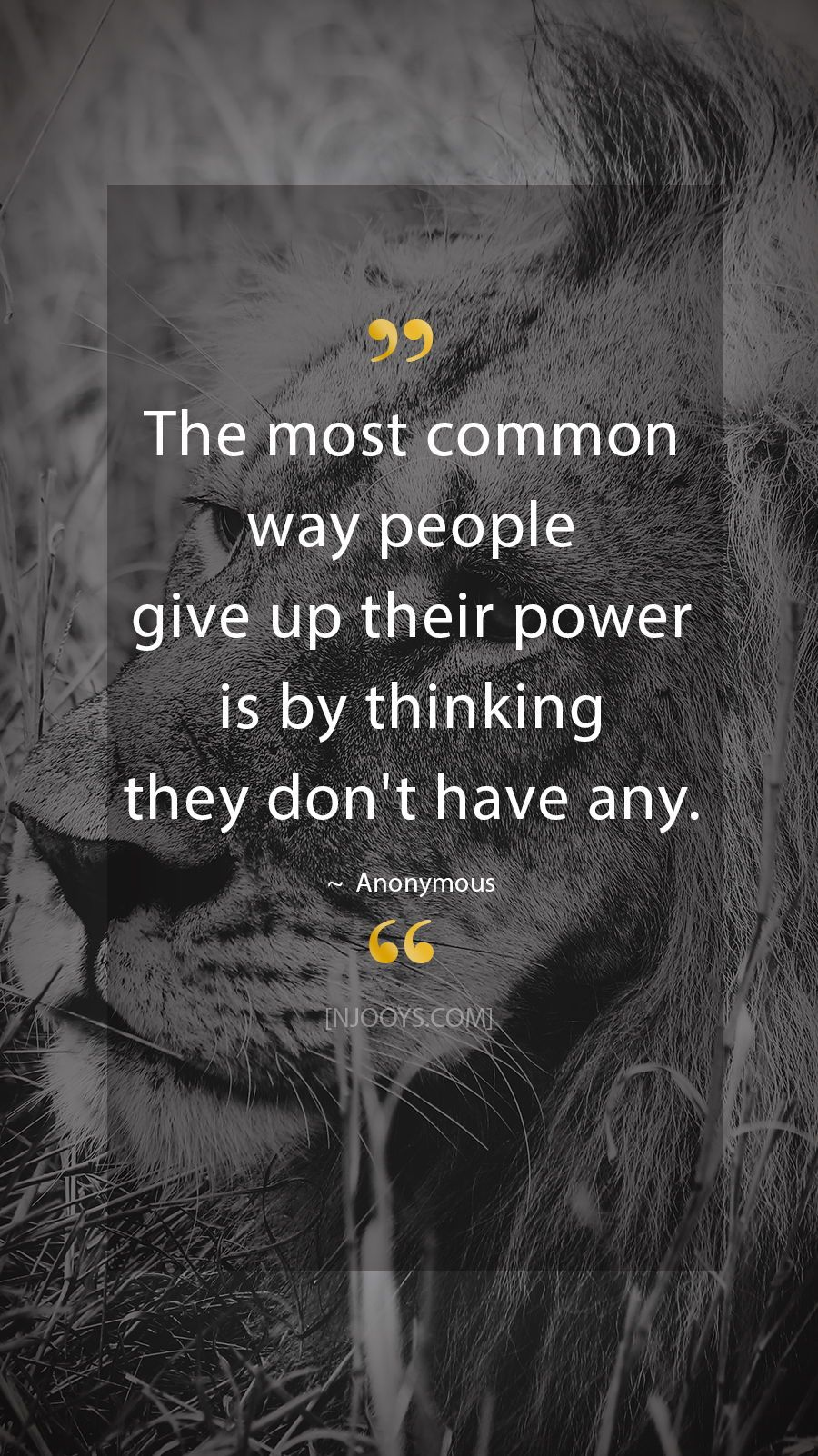 Image of: Timeline Anonymous Quotes The Most Common Way People Give Up Their Power Is By Thinking They Dont Have Any Anonymous Quote Evolve Your Mindset With Pinterest Anonymous Quotes The Most Common Way People Give Up Their Power Is
