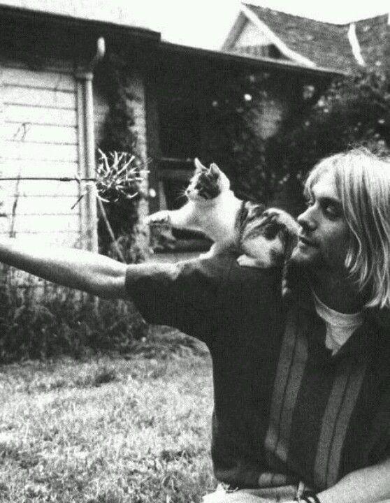 Kurt and a kitty