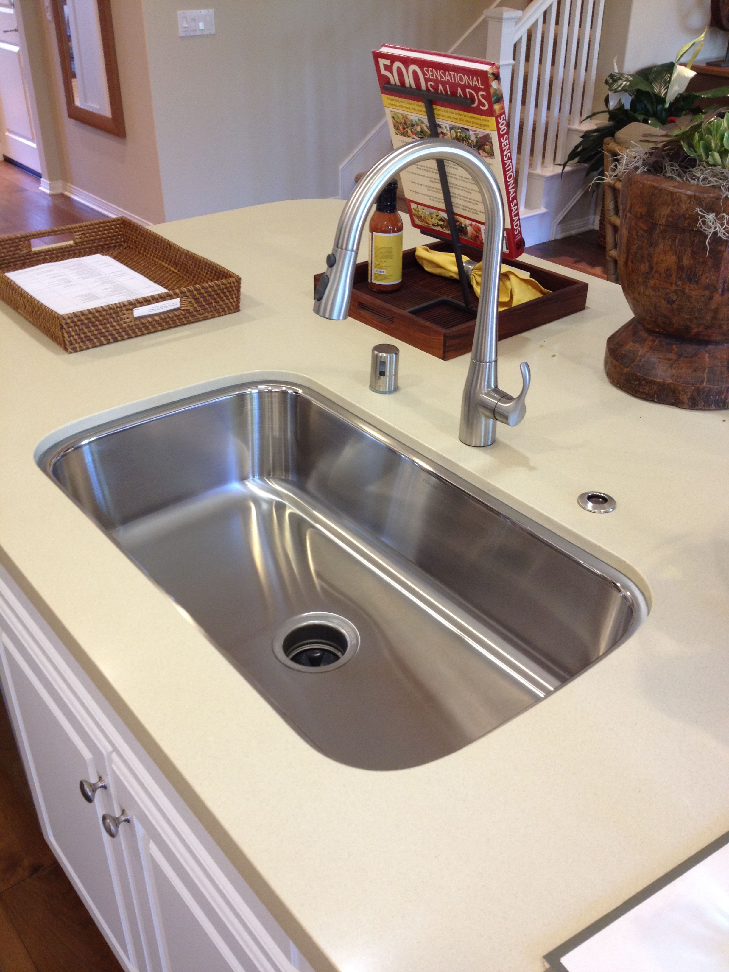 Giant stainless steel single-tub sink. You want undermount - no seam ...
