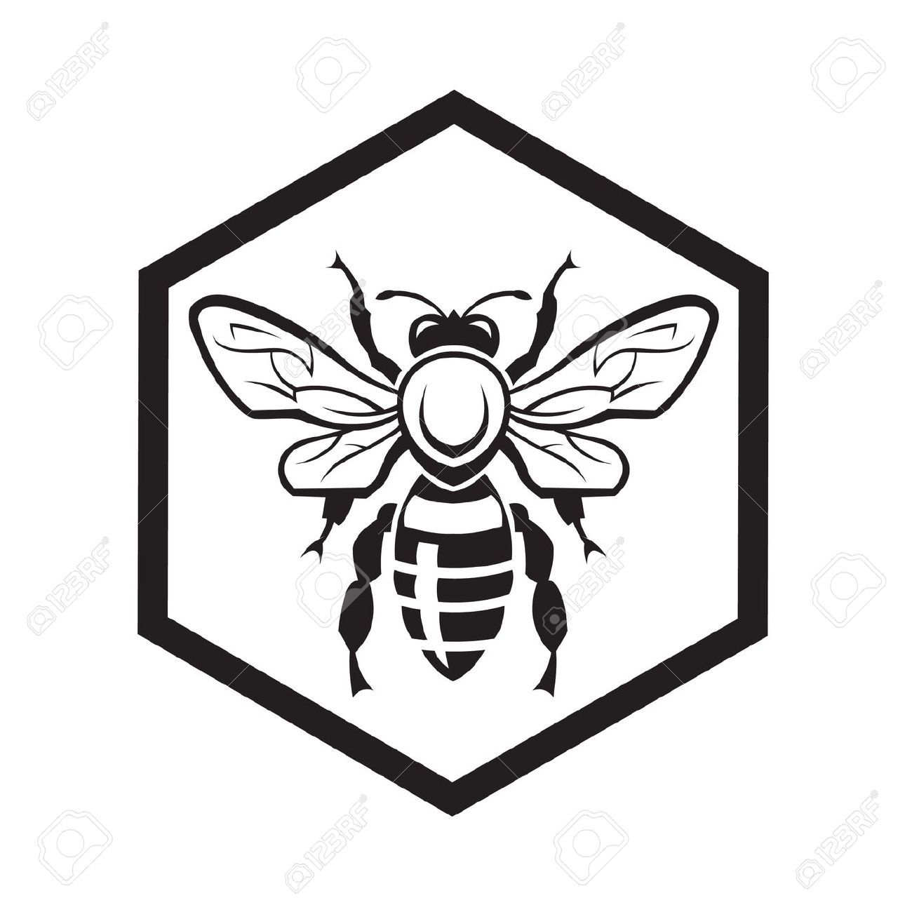 Honeycomb Bee Drawing
