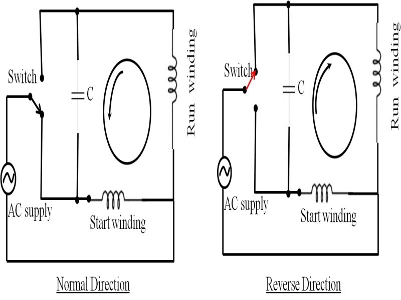 Amazing Single Phase Motor Wiring Diagram With Capacitor Start South Carolina In 2021 Diagram Wire Diagram Design