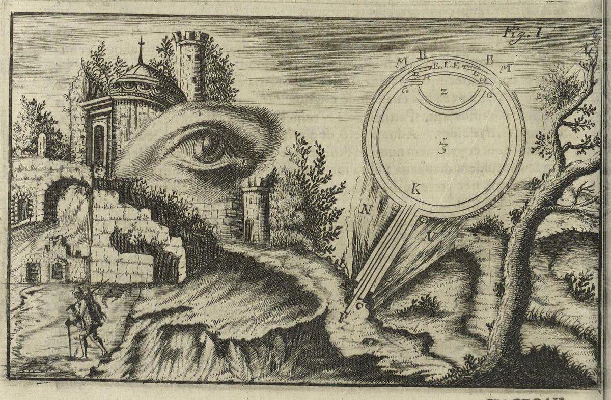 Johannes Zahn | Ansicht und Durchschnitt des menschlichen Auges ...