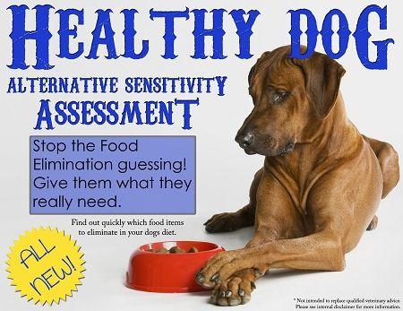 Healthy Dog Alternative Sensitivity Assessment (c) 80