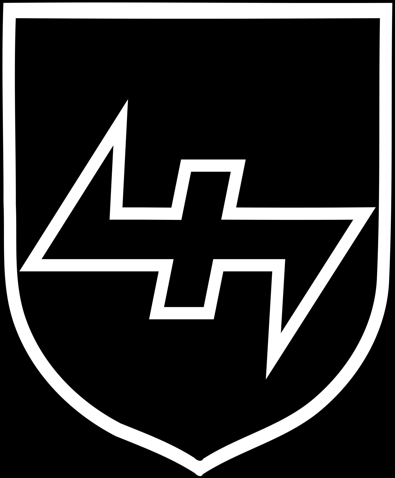 34 ss freiwilligen grenadier division landstorm nederland division buycottarizona