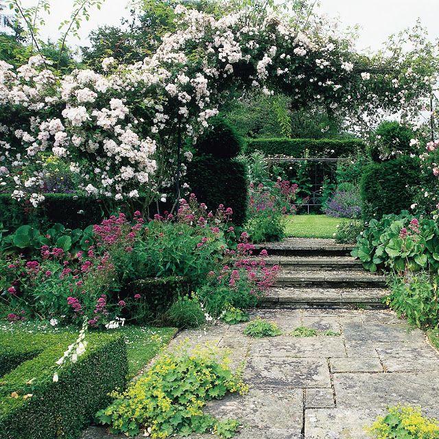 El Jardin De La Alegria Rosales Ramblers Sarmentosos O Lianas