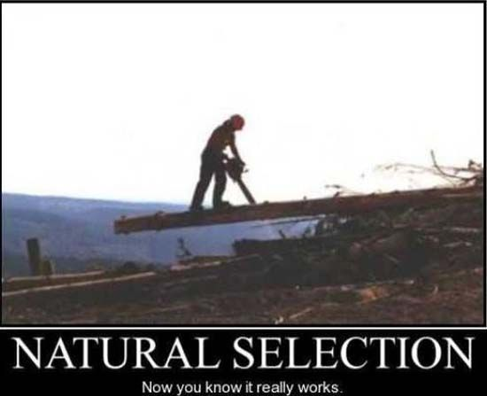 demotivational-posters-natural-selection