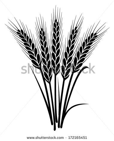 Vector Black And White Bunch Of Wheat Ears With Whole Grain And Leaves Clip Art Wheat Tattoo Stained Glass Flowers