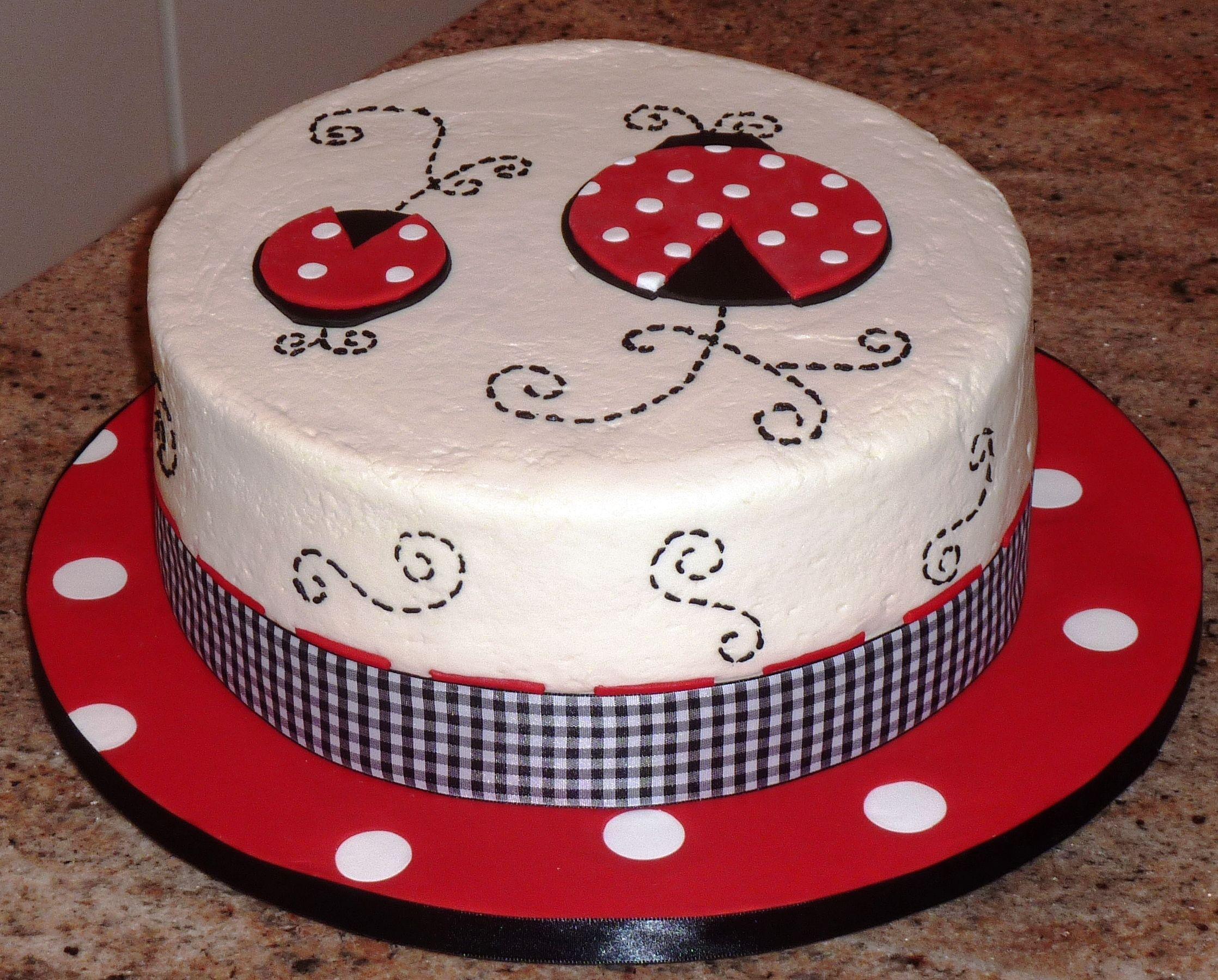 Ladybug Cake  This Ladybug Design Matched The Layette The