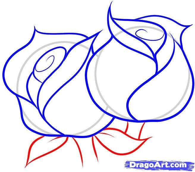 how to draw roses | Drawing | Drawings, Rose drawing ...