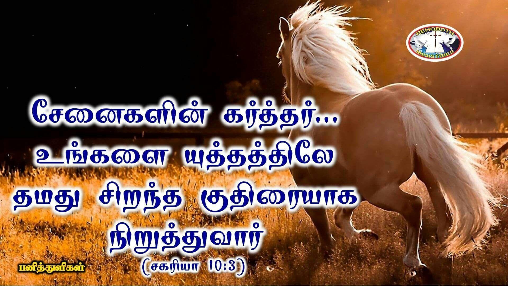 Wonderful Wallpaper Horse Bible Verse - e6abff57120a7d1d54c2bccb5b871d50  Trends_16398.jpg