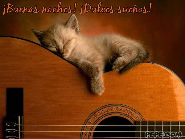 ¡Buenas noches! ¡Dulces sueños!