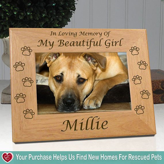 Personalized Pet Frame For Dogs - In Loving Memory Of My Beautiful ...