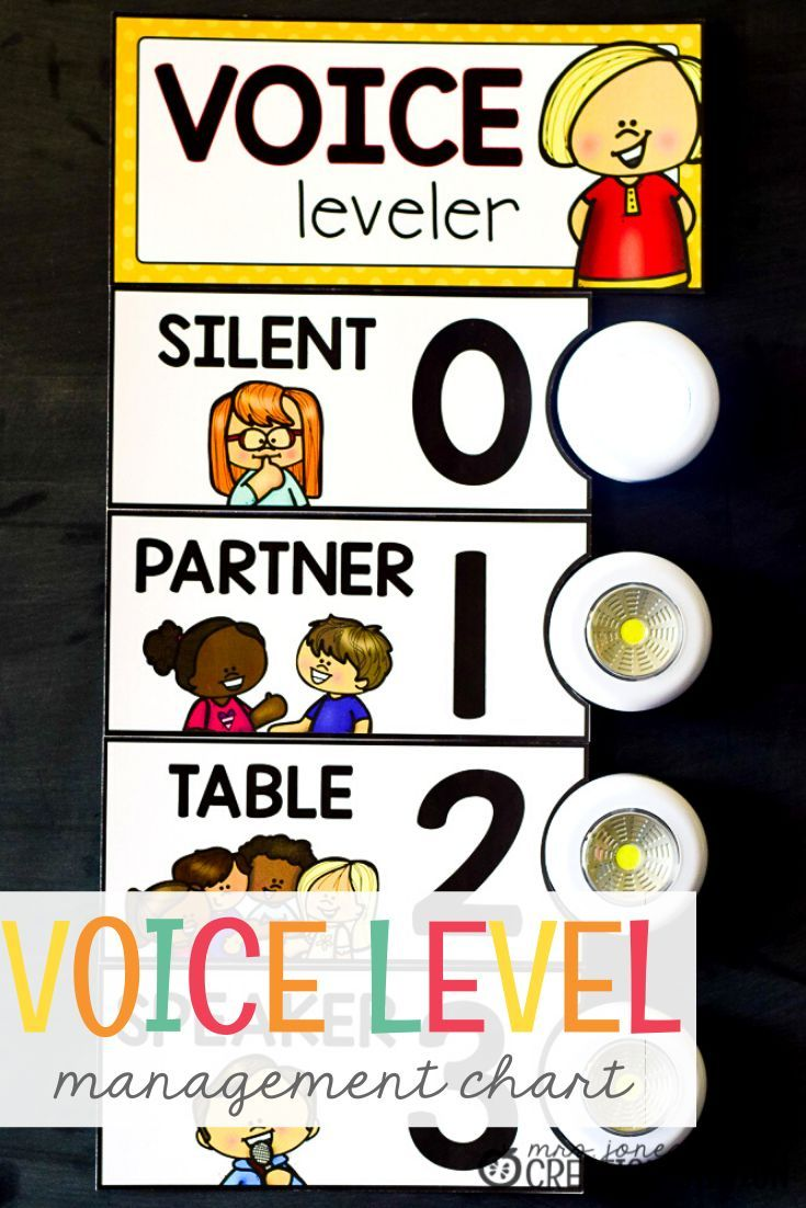 Controlling the Voice Level  Is the voice level a problem in your classroom? If so, here is a free