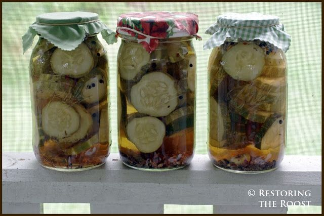 Restoring the Roost: Refrigerator Pickles with a Kick
