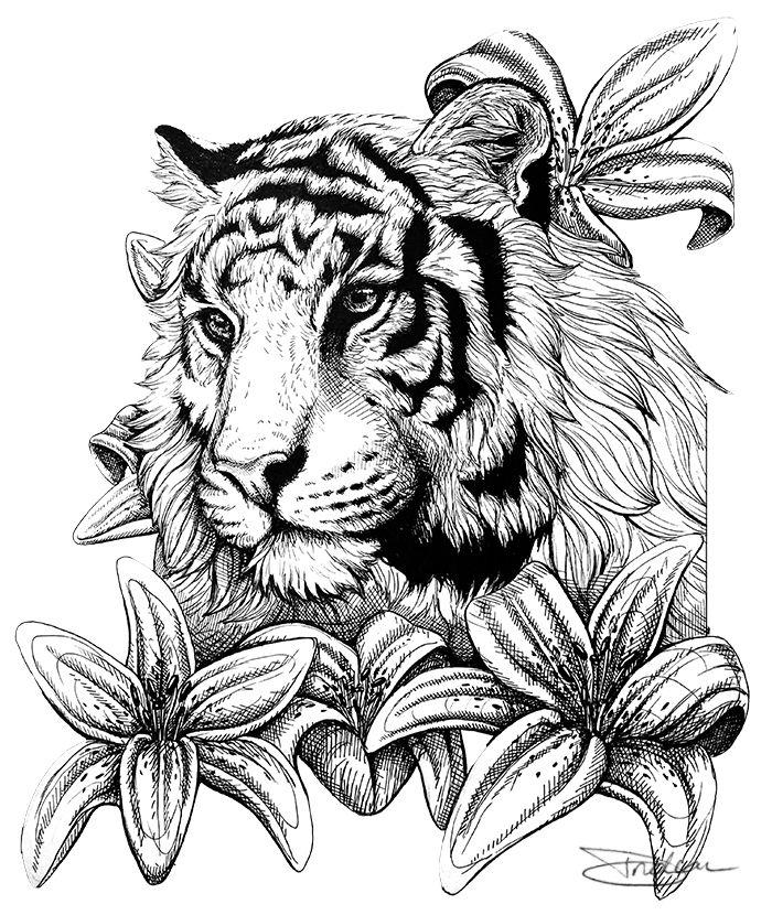 Tiger Tiger by LuxDani on DeviantArt | Coloring pages | Pinterest ...