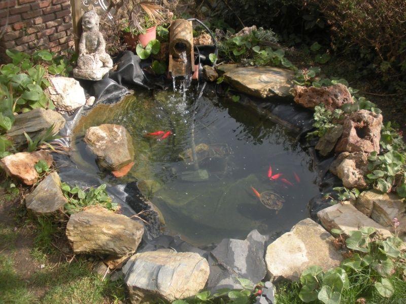 Estanque pequeño con peces Ponds and fountains Pinterest Fountain