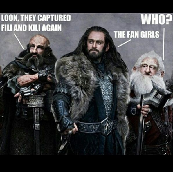 Fangirls took Kili and Fili again!!???!!!Last i checked they were not in my house so we have not captured them yet.