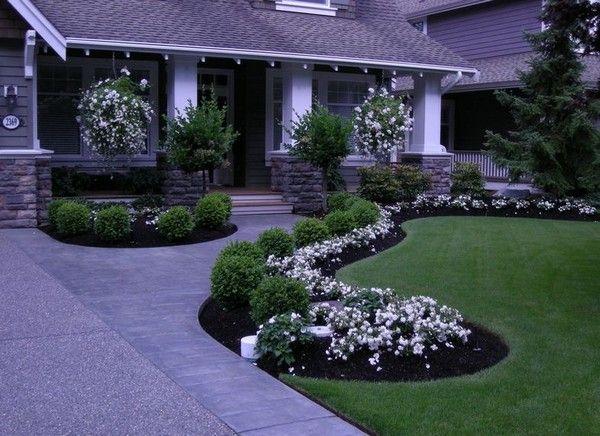 Inexpensive Landscaping Ideas. Boxwood LandscapingFront Yard ...