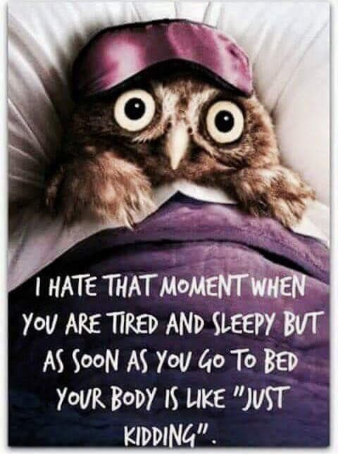 Funny Night Quotes Pin by Tammy Reed on Clip Art | Good night quotes, Night quotes, Funny Funny Night Quotes