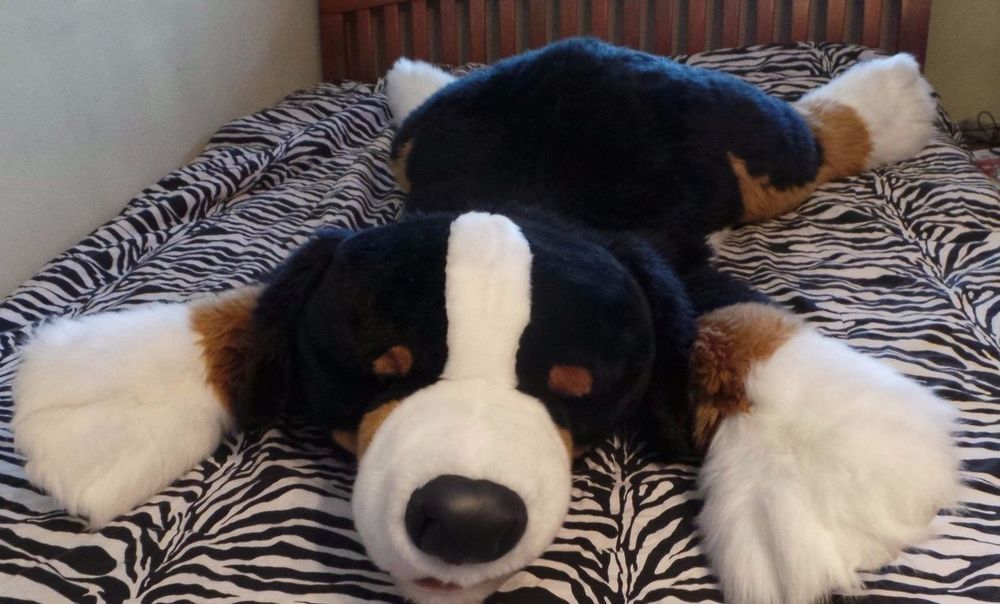 Bernese Mountain Dog Puppy Toys