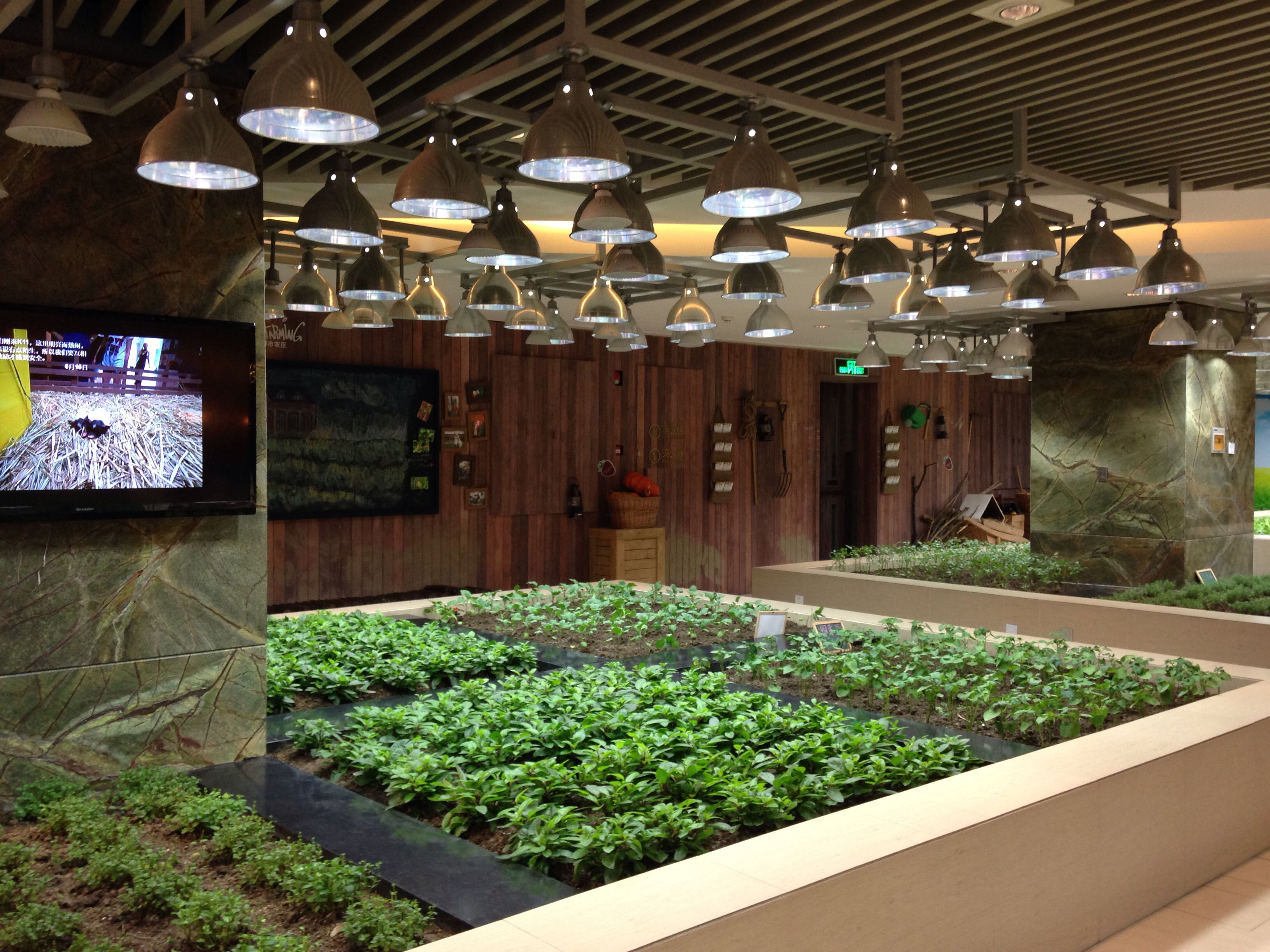 Indoor veggie and herb garden at K11 mall in Shanghai. Restaurant ...