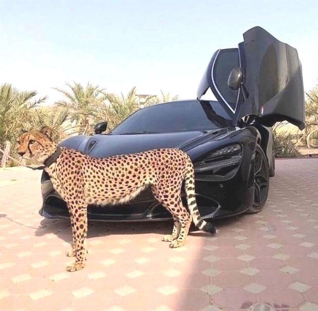 #cars #car #Beautifulcars to see – Schöne Autos #motorrad #Motorrad lusti …   – Motorrad
