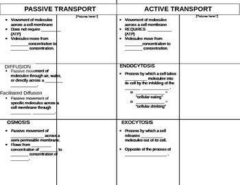 Passive Vs Active Transport Science Cells Biology Worksheet Cell Theory