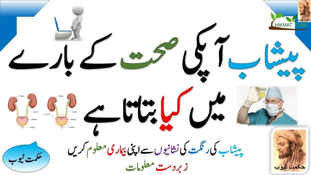 Health Care Health Care Tips In Urdu Urine Problem Peshab Ka Ilaj