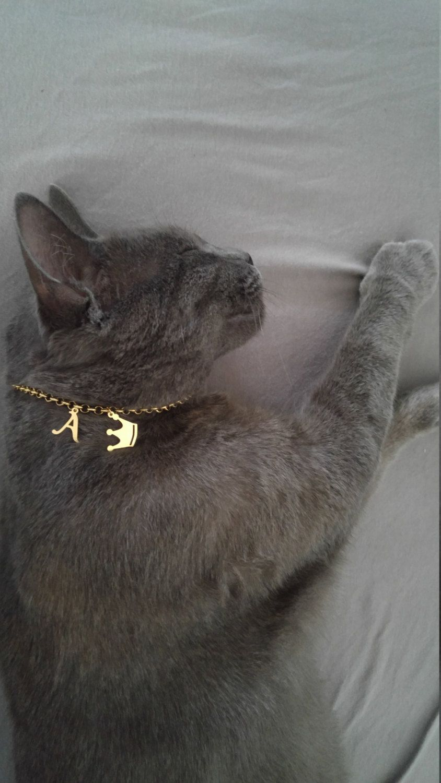 Garage Cat Collar Cat Name Cat Lish Cat Id Tags Pet Id Personalized Cat Collar Catcustom Cat Collar Cat Name Cat Lish Cat Id Tags Pet Id Personalized Cat Noiseless Cat Id Tags Cat Id Tags Engraved Wal inspiration Cat Id Tags