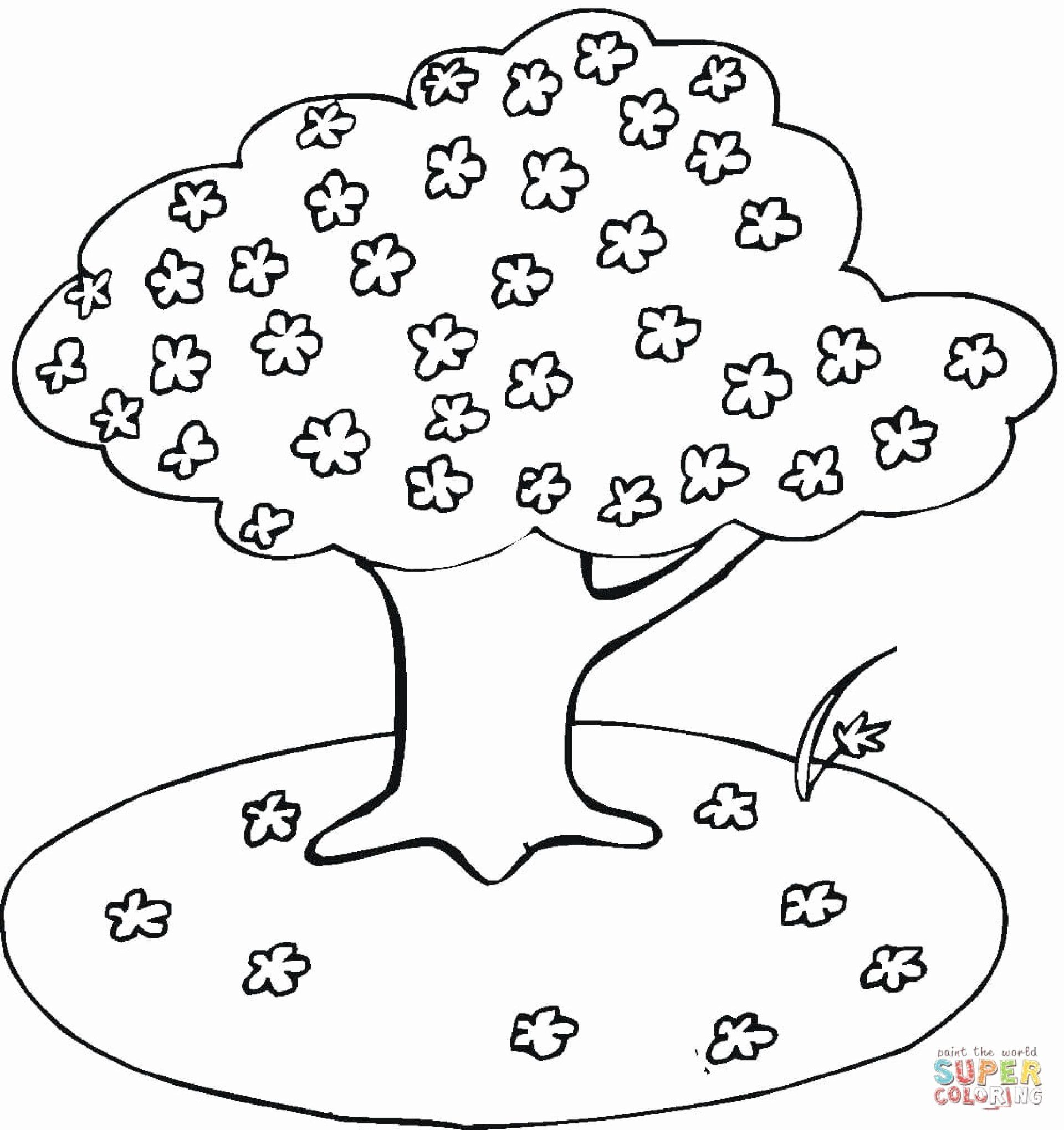 Cherry Tree Coloring Pages Fresh Unique Free Printable Tree Word