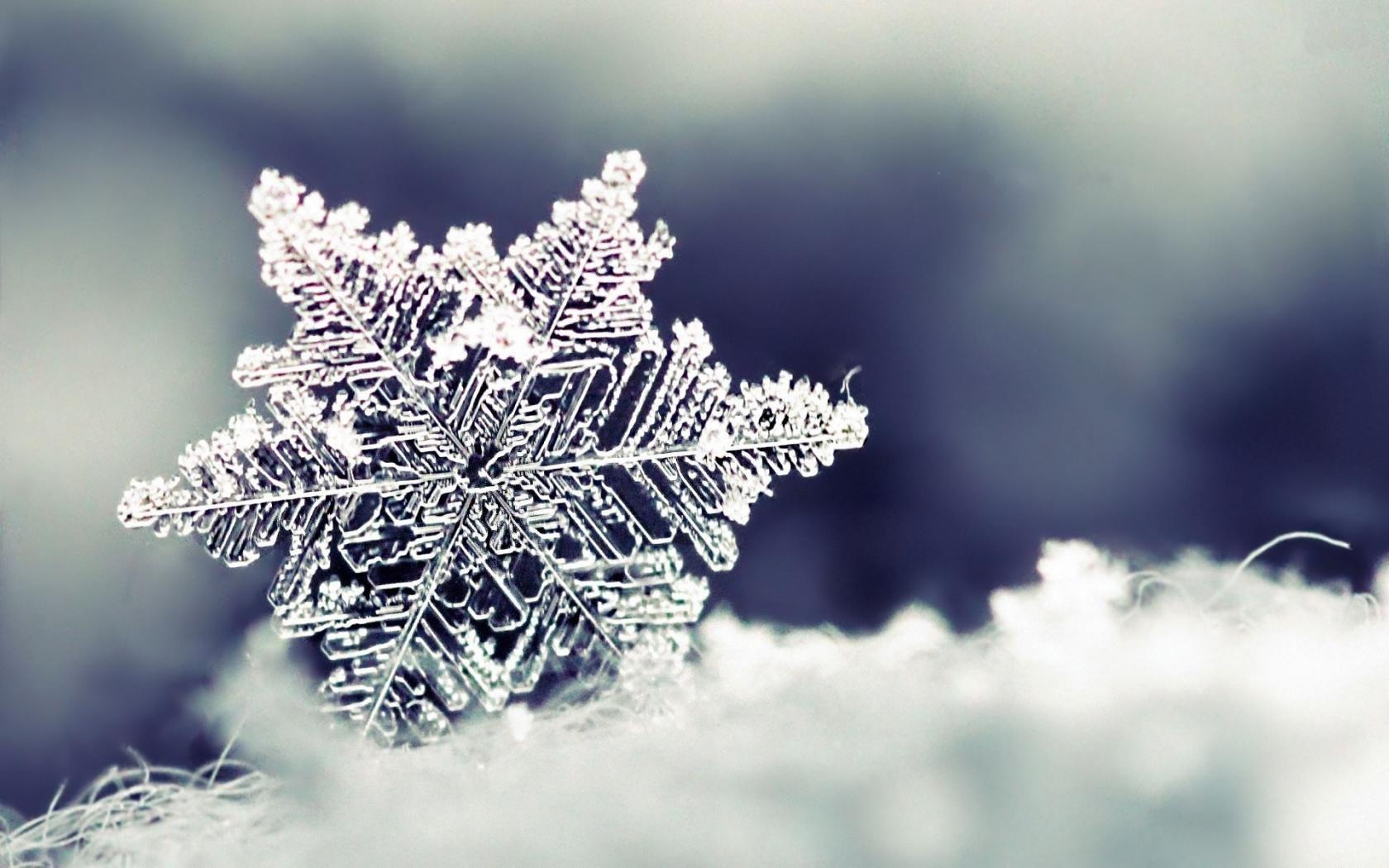 Desktop Wallpaper Backgrounds Snowflake Wallpaper Winter Wallpaper Snowflake Photography