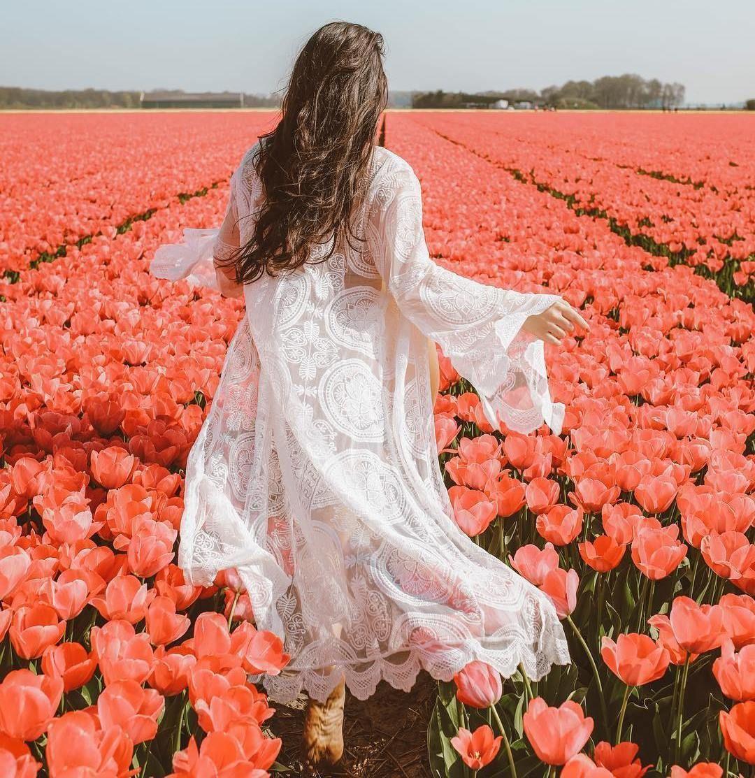 Ana Rosa Tulip Fields Tulips Photography