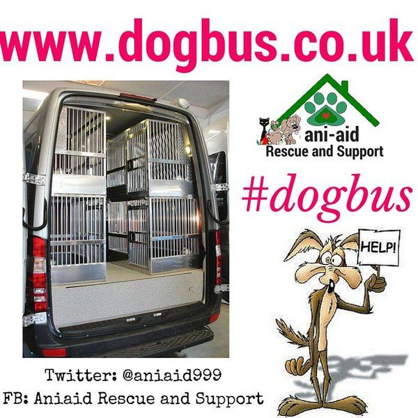 The Dogbus website is now up & running. Please take a look to see how you can help get the #DogBus  on the road. ***Website: www.dogbus.co.uk  ***Twitter @aniaid999 #dogbus : https://twitter.com/aniaid999 ***FB: https://www.facebook.com/aniaid *** DONATION LINK-GO FUND ME: http://www.gofundme.com/dogbus ****email: info@dogbus.co.uk