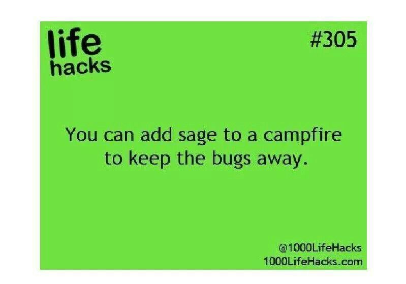 Add sage to campfire to keep bugs away