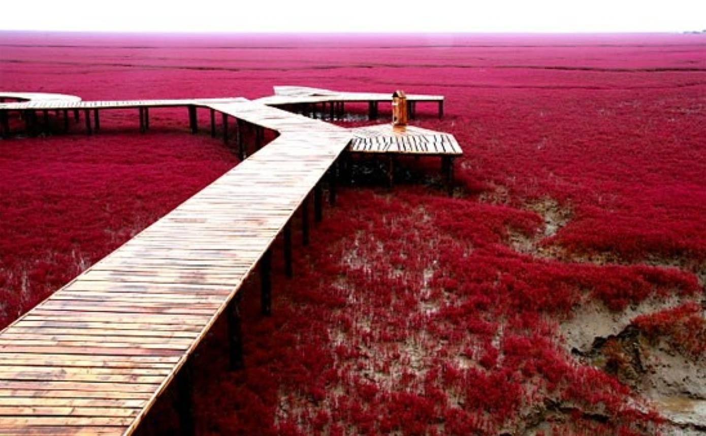 картинки красного берега тоже есть