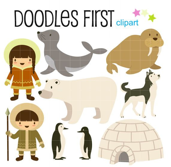Arctic Life Polar Animals Digital Clip Art for by DoodlesFirst ...