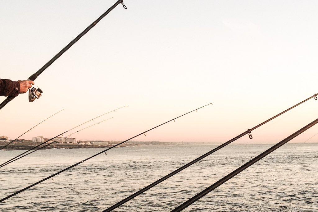 • surprise • #4plusArtStudio #letsseetheworld #porto #oporto #portugal #europe #sunset #bytheocean #bytheriver #fozdodouro #nature #naturelover #naturelovers #travel #wanderlust #explore #travellove #traveladdict #workandtravel #simplicity #simplelife #lessismore #minimalist #minimalshots #minimal #minimalism #fishining #unexpected #theartofslowliving #slowlife