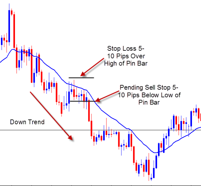 Pin Bar With Moving Average Forex Strategies Forex Resources Forex Trading Free Forex Trading Signals And Fx Forecast Moving Average Creating Goals Forex