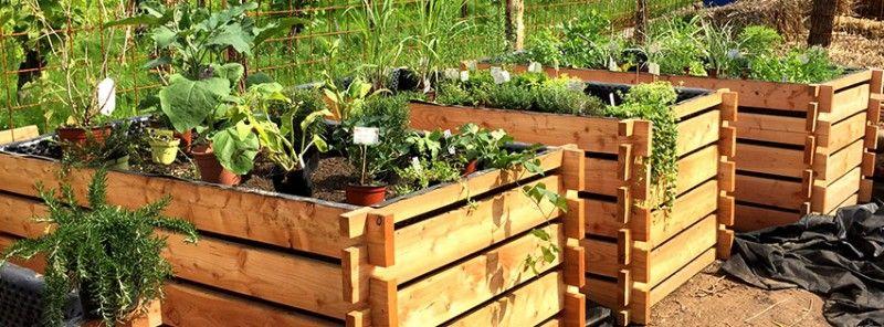 Potager sueleve avec planches de bois mon jardin permaculture garden et plants for Planche potager