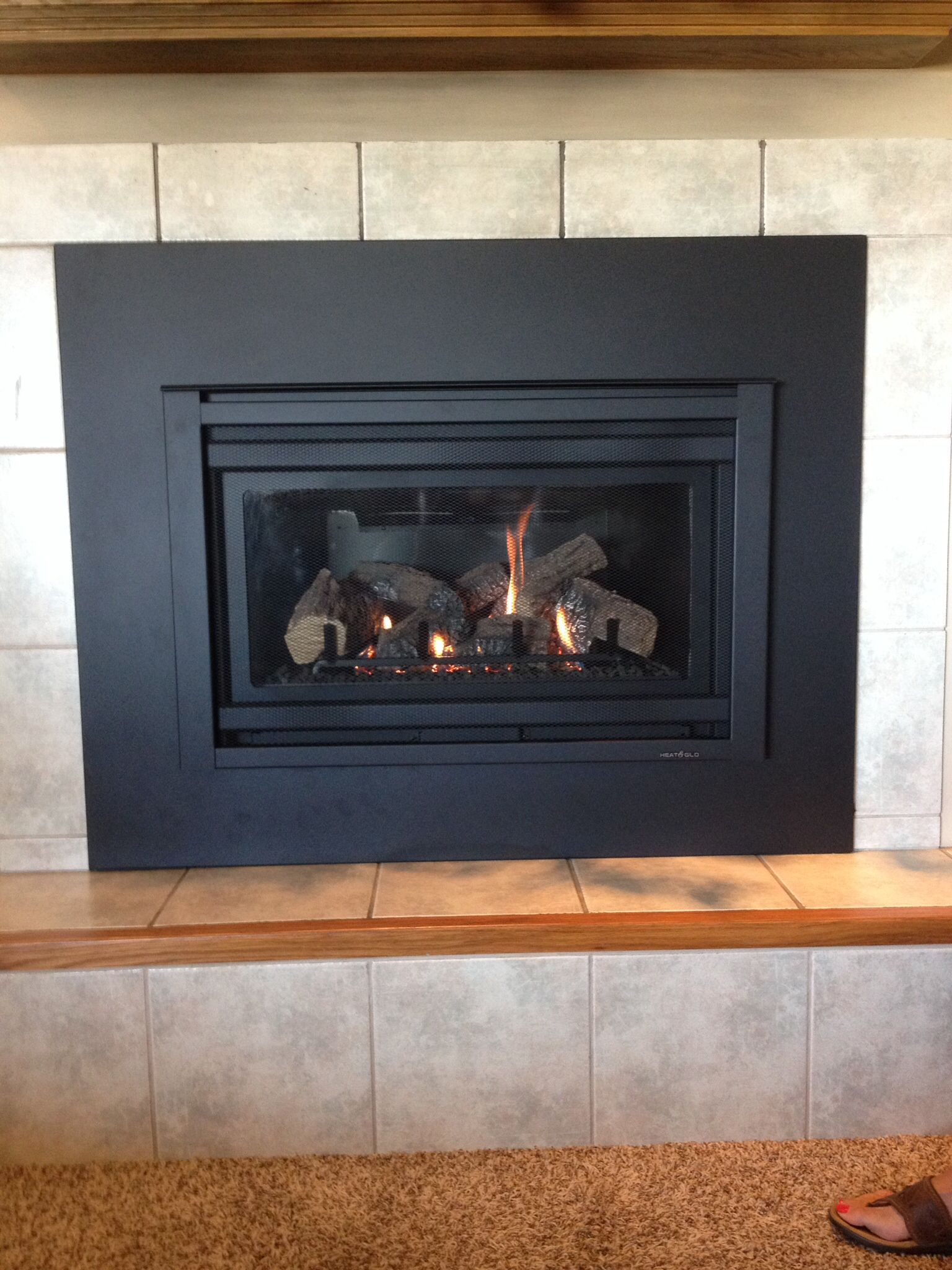 Heat N Glo Gas Fireplace Heat N Glo Supreme I 30 Gas Insert With Custom Surround Panel