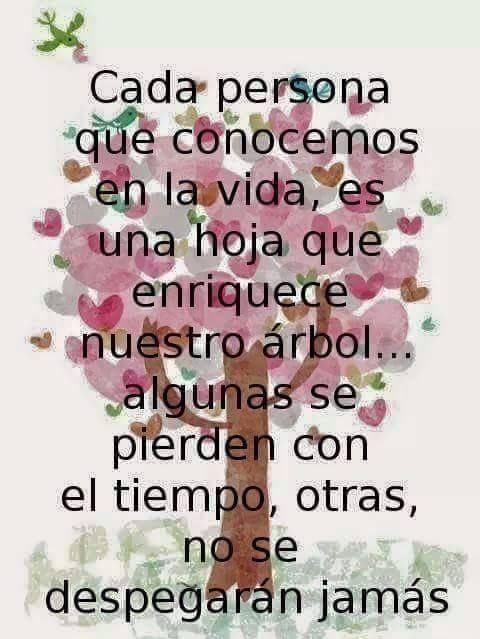 Cada persona que conocemos en la vida...