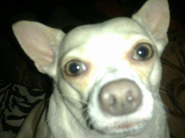 Chichi, my girl....