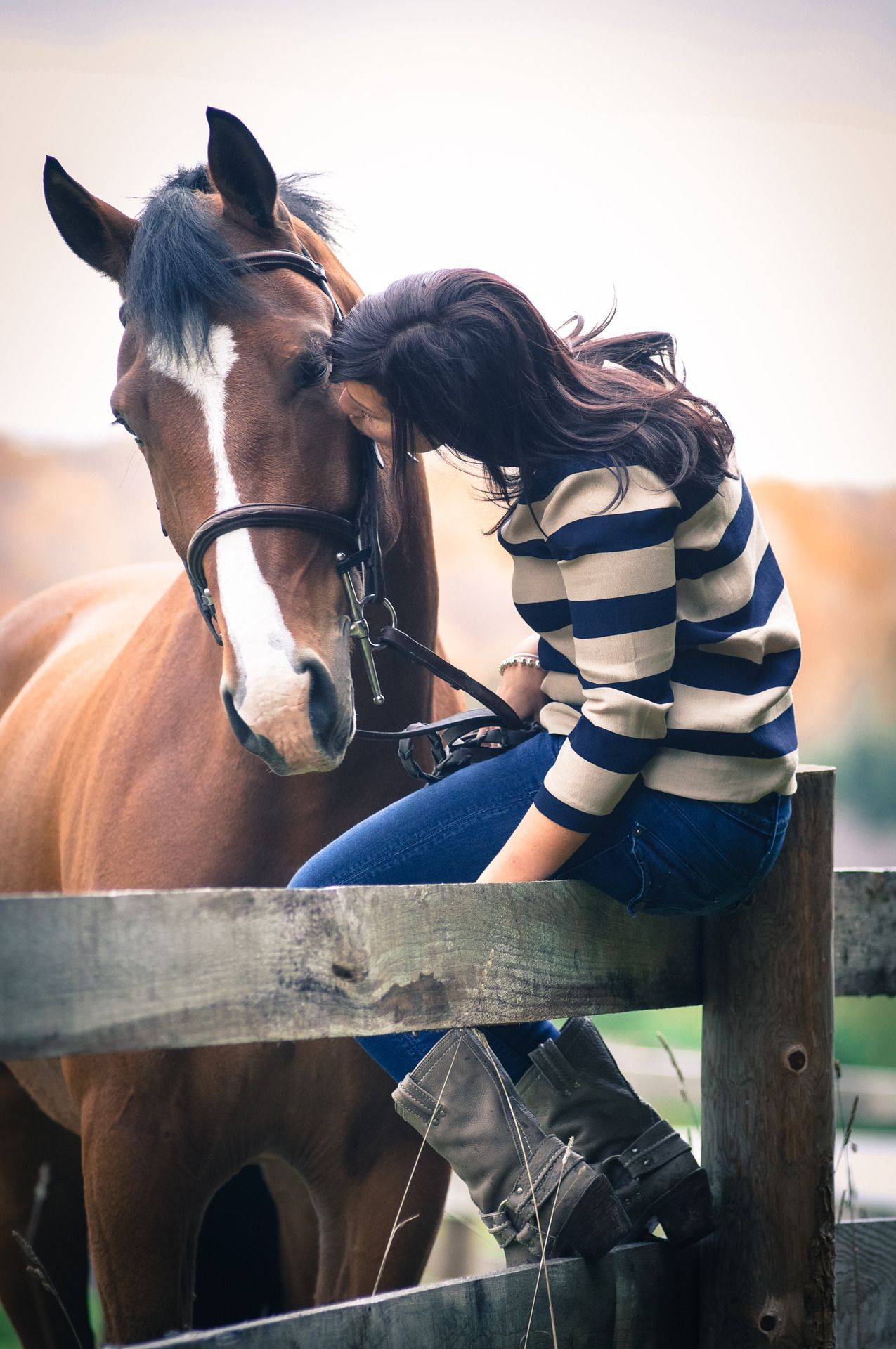 Photograph horses - this is not a five-day in the office