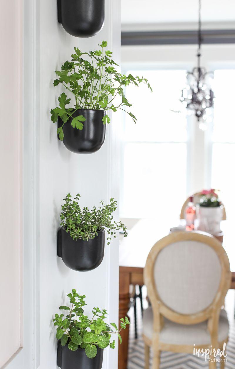 modern kitchen herb garden herb garden in kitchen herb on indoor herb garden diy wall kitchens id=88289