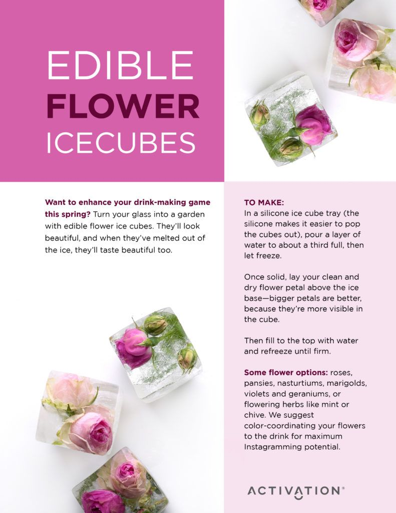 9 Edible Flowers And Their Surprising Health Benefits Activation Products Edible Flowers Edible Flower Ice Cubes